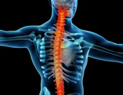 catastrophic spinal injury